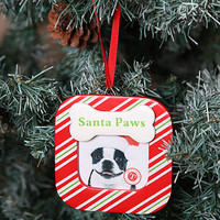 Christmas Tree Picture Frames For Dogs