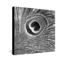 Lisa Argyropoulos Mod Plumage Gallery Wrapped Canvas