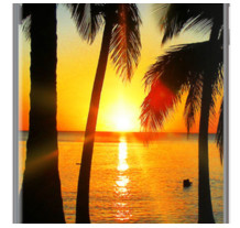 Bright Sunset on Exotic Beach By BluedarkArt for Apple iPhone 5