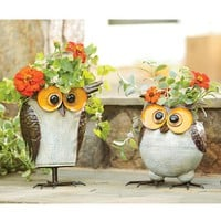 Iron-Crafted Owl Planters - Plow & Hearth