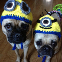 Dog or Cat Minion Custom Hat