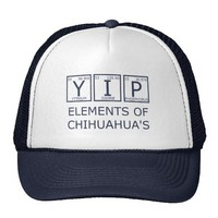 Zazzle YIP Elements Of Chihuahua's Hat