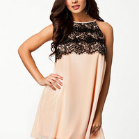 Halter Eyelash Lace Shift Dress, Elise Ryan