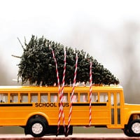 school bus, Christmas tree, fine art photography