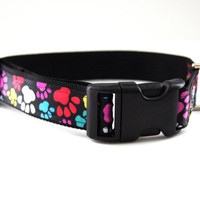 Colorful Paw prints Dog Collar Adjustable Sizes M, L, XL)