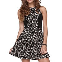 Element Clair Fit N Flare Dress at PacSun.com
