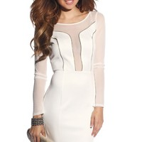 Sexy Zipper Cut-Out Long Sleeve Mesh Dress