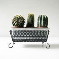 Perforated Metal Planter - 1950s Mid Century Planter - Black Plant Holder