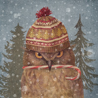 Christmas Owl Art Print by Terry Fan