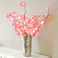Butterfly Orchid Light, Lighting | Graham and Green Spring