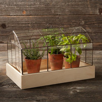 Williams-Sonoma Copper and Glass Terrarium from Williams-Sonoma | BHG.com Shop