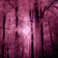 Nature Photography, Dreamy Pink Surreal Trees, Pink Forest Trees Woodlands, Dark Pink Mauve Nature,Dark Pink Fantasy Nature Trees 8x12