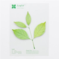 Large Leaf Sticky Note